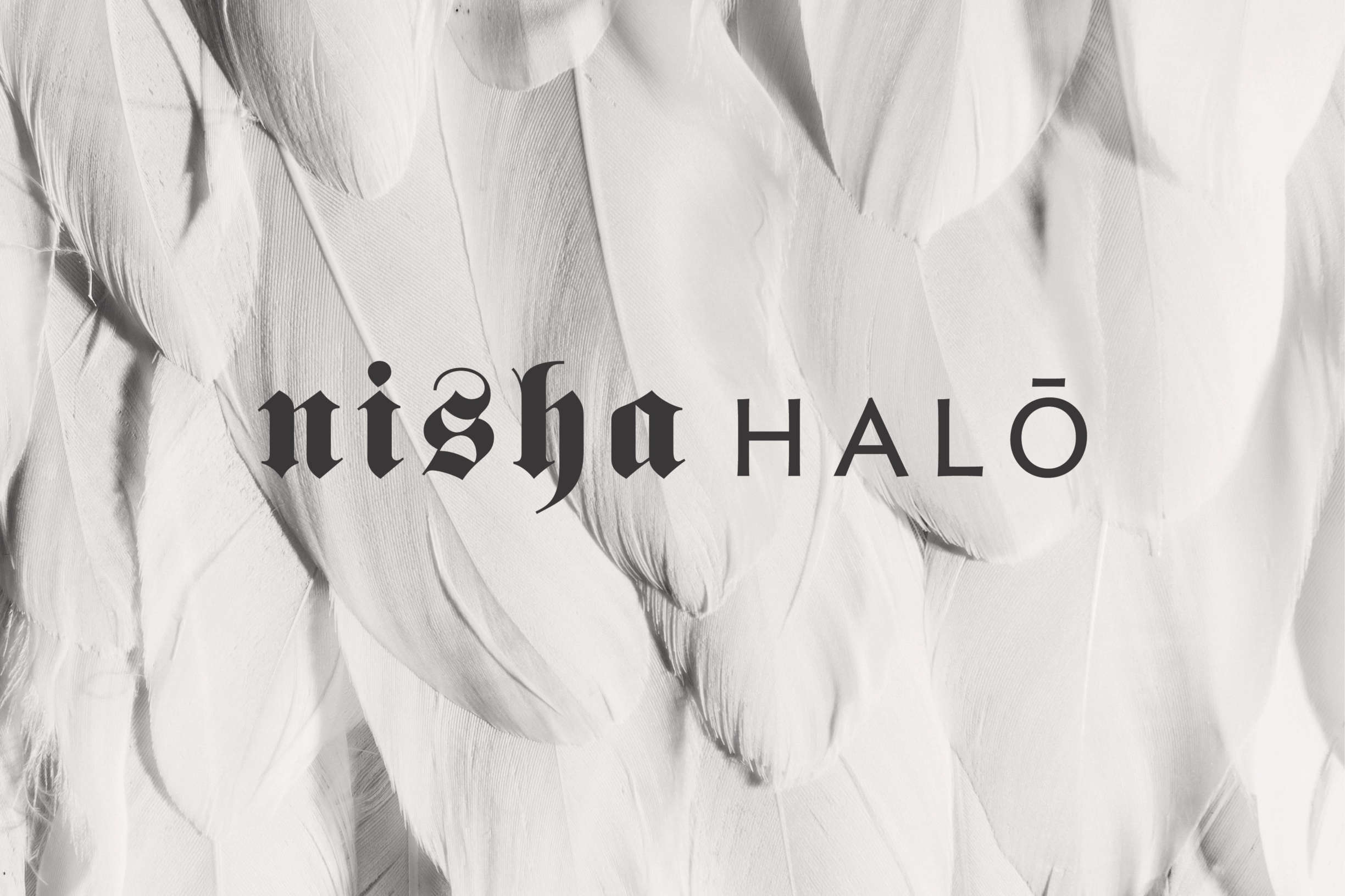Nisha Halo slide